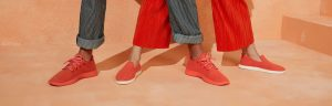 direct to consumer shoes by Allbirds
