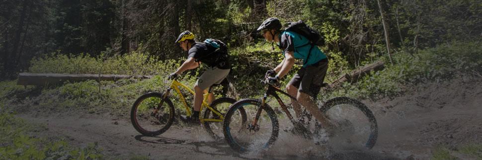Fezzari Direct to Consumer Bikes