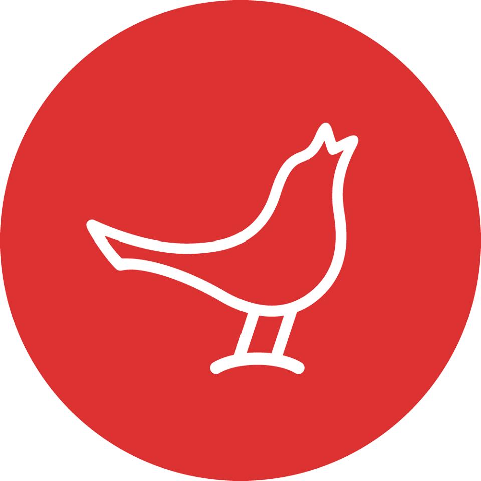 Logo Design Cost San Jose