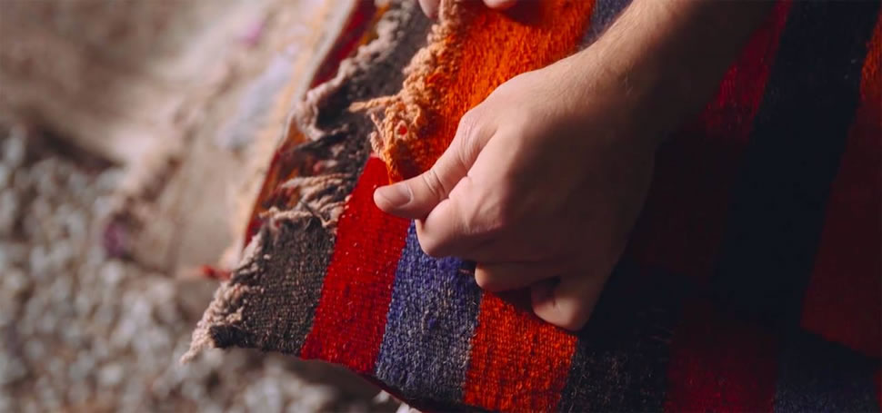 Revival Rugs Direct to Consumer