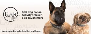 link-akc-dog-tracking-direct-to-consumer