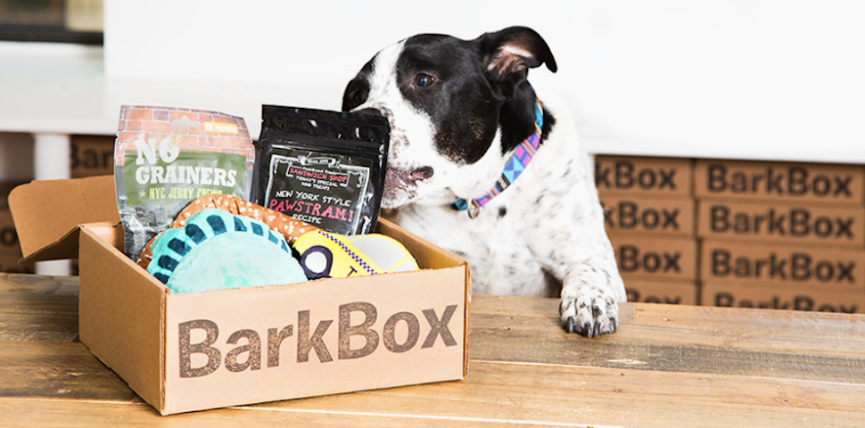 BarkBox Toys