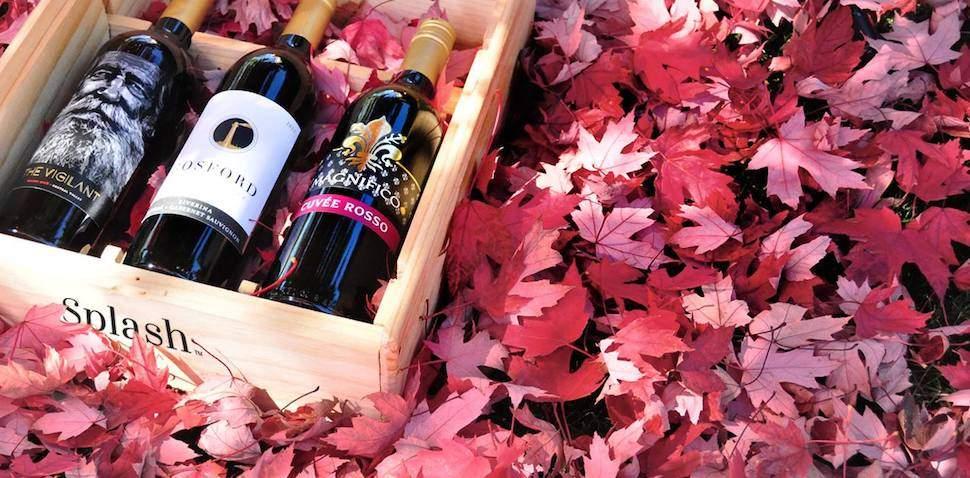 Splash Wines Wine