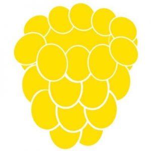 Yellowberry Bras